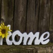 Rośliny – łatwy i efektowny sposób na czyste powietrze w domu